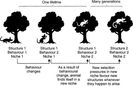 General behaviour-led selection process